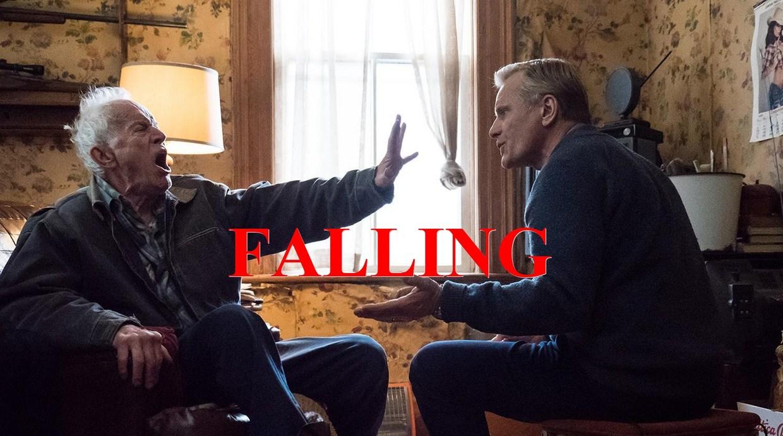 Photo du film Falling
